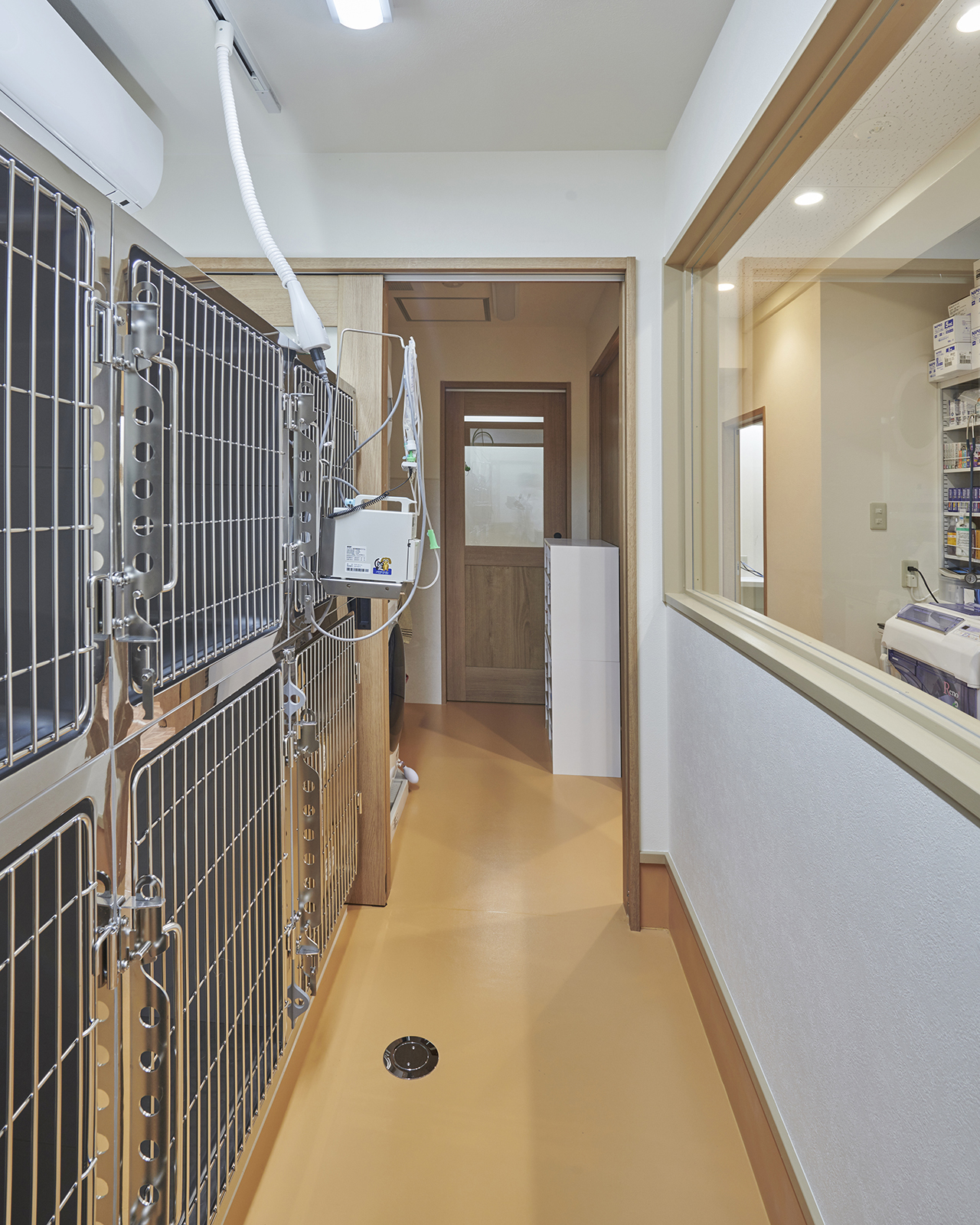 dog_hospitalization-room